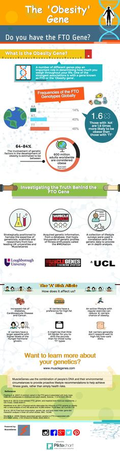 """The Obesity / Fat Gene! FitnessGenes partner with leading sports science researchers at Leading Universities on the FTO gene. """"Am I genetically programmed to be overweight?"""" www.fitnessgenes.com #genetics #fitness"""