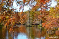 Chatham Lake in Louisiana