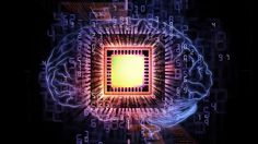 Researchers at the University of Zurich and ETH Zurich have designed a sophisticated computer system that is comparable in size, speed and energy consumption to the human brain.