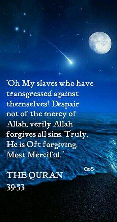 The Quran. Allah forgives all sins.