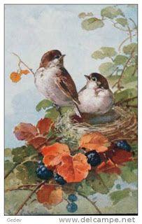 7 das Artes: Pássaros de Catherine Klein.