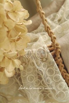 paleyellow.quenalbertini: Lace | VoyageVisuel on Indulgy