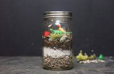 Terrarium Supply Kit – Use your own favorite glass container and make a dinosaur terrarium in a snap.  This convenient supply kit includes everything you need to assemble and grow your own miniature world (mason jar not included). Enough to make 3-4 small Mason Jar Terrariums, or 1-2 Large Bell Jar Terrariums.