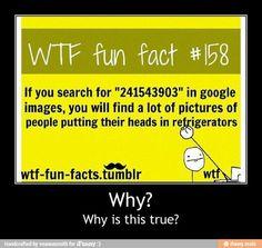 Wtf fun fact | True | Pinterest