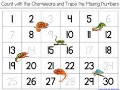 480126010255841158 on Chameleon Coloring Page Chameleons Worksheets And Kindergarten