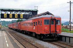 キハ22 251富良野線美瑛 Amsterdam, Japanese, Train, Hokkaido, World, Japanese Language