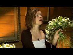 Ботаника. Летняя композиция из ромашек. 252 - YouTube