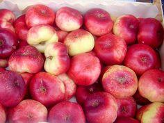 Jak udělat broskvovou přesnídávku   recept Apple, Fruit, Food, Apple Fruit, Essen, Meals, Yemek, Apples, Eten