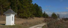 Ferraty-zaistené cesty - Okruh cez Zniev: prvé jarné lesné behanie - Vetroplach magazin
