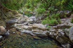 https://flic.kr/p/Jwg4HG | Ribeira de João Gomes | Corredor Verde - Funchal discovermadeira.blogspot.pt/