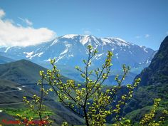 MUNZUR DAĞI Turkey Mountain, Zurich, Mount Rainier, Mountains, Nature, Travel, Dreams, Blog, Sweetie Belle