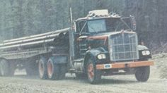 Gordon Riley transport Heavy Duty Trucks, Semi Trucks, Rigs, Trailers, Fields, Bears, American, Projects, Pictures