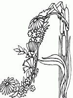 Alfabeto Floral.