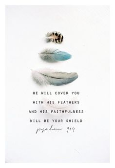He will cover you with His feathers... Psalm 91:4