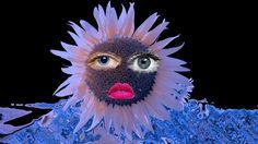 Photos - Google+ Collages, Google, Photos, Collagen, Collage, Cake Smash Pictures