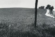 Paul den Hollander, South-Limburg-3, 1978, From Moments in Time