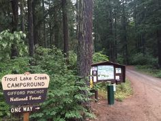 Trout Lake Creek Campground in Skamania County. Panoramio photo by Curious Gorge Guidebook Gifford Pinchot National Forest, Washington State, Trout, Live, Places, Outdoor Decor, Brown Trout, Lugares, Salmon