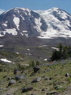 Adams Glacier Meadows - Hiking in Portland, Oregon and Washington - about 8 miles RT