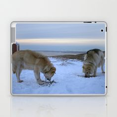 Ilulissat Greenland: The land of dog sleds and Midnight Sun Laptop & iPad Skin by David Hernández-Palmar - $25.00