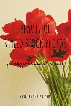 Are you in need of gorgeous, feminine, high-quality photos for your website? Click the image to receive a free set of styled stock images. Free Stock Photos, Free Photos, Photography Branding, Floral Style, Blog Tips, Floral Arrangements, Beautiful Flowers, Blogging, Feminine