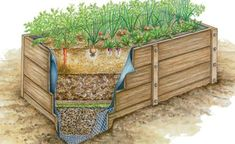 Ein Hochbeet bietet Gemüse optimale Wachstumsbedingungen und erleichtert die Gartenarbeit. Diese 10 Tipps sollten Sie bei der Planung, dem Bau und der Bepflanzung beachten.