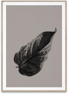 Paper Collective – Norm Architects, Sabi Leaf 01 Print 50x70cm