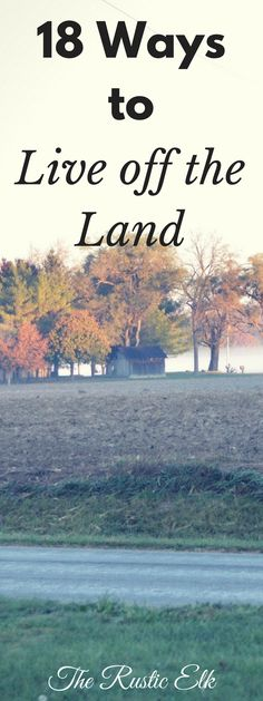 Living off the land can seem like an impossibility in today's convenience centered, work outside the home culture. But, it isn't! Here are 18 ways to help you live off the land.