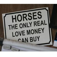 Horses-the only real love money can buy  www.thewarmbloodhorse.com