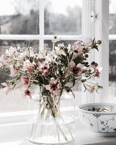 PINK FLOWERS IN GLASS VASE