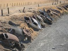 Abandoned cars used as erosion control in Detroit MI.