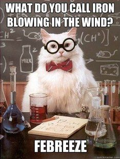 Chemistry Cat: Wht do you call iron blowing in the wind? Febreeze