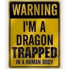 I WANT THIS! I made a joke about beibg a dragon recently. I need this!