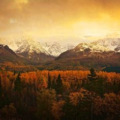 Just outside Palmer, Alaska on the first day of fall.