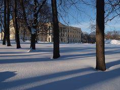 Royal Castle in winter Oslo, Castle, Winter, Plants, Winter Time, Castles, Plant, Winter Fashion, Planets