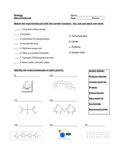 a worksheet to help students learn the basic differences between elements compounds and. Black Bedroom Furniture Sets. Home Design Ideas