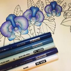 Started my first full colour along with the super talented video thank you. I was feeling a little overwhelmed with colouring… Coloring Book Art, Coloring Tips, Adult Coloring, Coloring Pages, Colored Pencil Tutorial, Colored Pencil Techniques, Lost Ocean, Colouring Techniques, Drawing Techniques