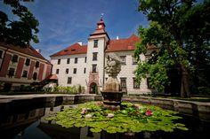 The  castle Trebon