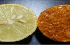 Το καλύτερο λευκαντικό πήλινγκ με απλά υλικά της μητέρας φύσης! Κάνει και σούπερ σύσφιξη! | Μυστικά ομορφιάς | mystikaomorfias.gr Best Beauty Tips, Beauty Hacks, Health And Beauty, Lime, Health Fitness, Fruit, Recipes, Thanks, Limes