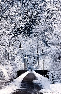 Snowy bridge,Fussen, Germany