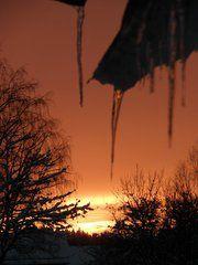 The home garden a winter morning<3
