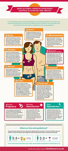 Alcohol And The Body Infographic. Another reason to stop drinking alcohol is the dreaded MUFFIN TOP (Women) and POT BELLY (Men).