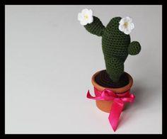 Simple cactus ENGLISH