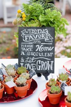 Succulents as Wedding Favors with Display Table chalkboard instructing guests. Succulents & Cream themed wedding. Outdoor Wedding Ideas