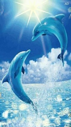 Free Animated Dolphins mobile wallpaper by paula on Tehkseven Dolphin Images, Dolphin Photos, Dolphin Painting, Dolphin Art, Water Animals, Animals And Pets, Strange Animals, Nature Pictures, Animal Pictures