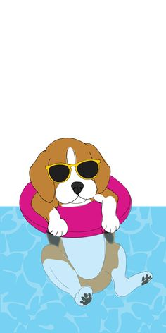 Are you interested in a Beagle? Well, the Beagle is one of the few popular dogs that will adapt much faster to any home. Beagle Art, Beagle Puppy, Cute Beagles, Cute Dogs, Dog Wallpaper Iphone, Iphone Backgrounds, Iphone Wallpapers, Iphone Hintegründe, Dog Grooming Shop