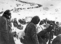 Historias de Stalingrado - El cabo Arthur Krüger, del 120 Regimiento de Infantería motorizada (I)   Grupo de Estudios de Historia Militar