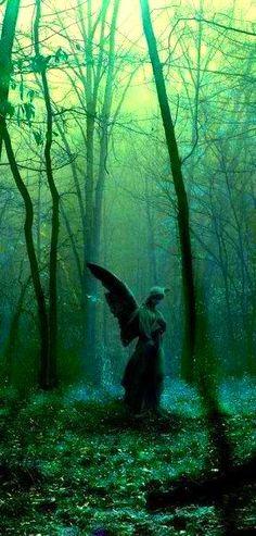 L'angelo di giardino