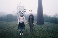 Animal masks in love