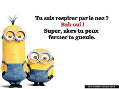 quelle répartie :) Plus Lol, Minion Humour, Funny Minion, Rage, Memes, Quote Citation, Image Fun, French Quotes, Minions Quotes
