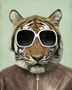 The Cool Tiger in Sunglasses 8x10 Art Print. $18.00, via Etsy.